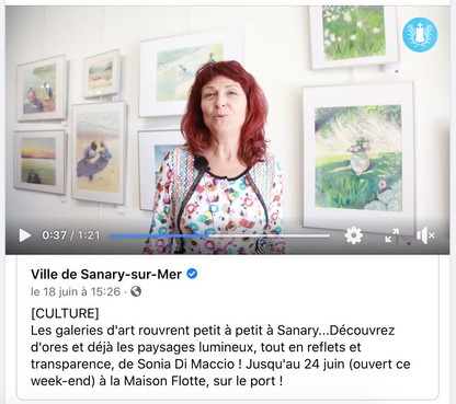 Interview filmed by the town hall of Sanary-sur-mer - 2020