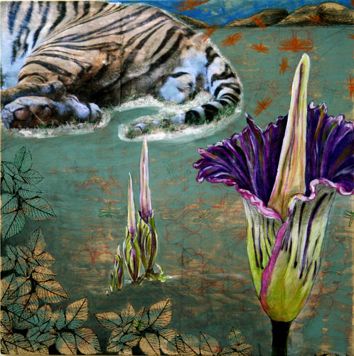 Sumatran Tiger and Corpse Flower.jpg