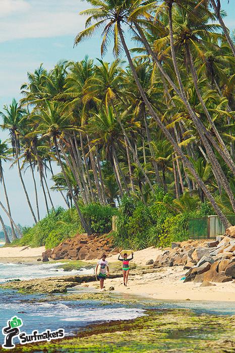 Серфинг  на Шри-Ланке сикрет спот.jpg