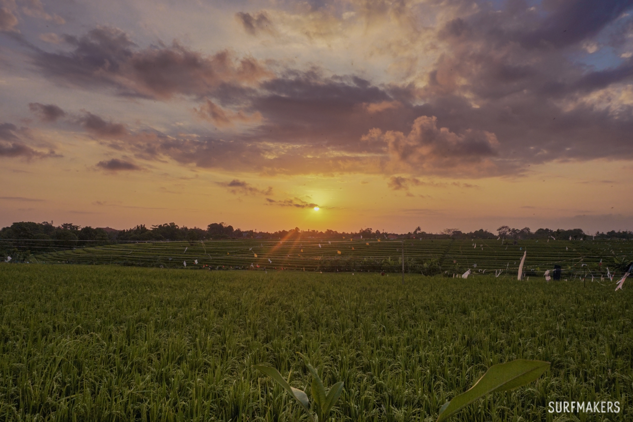 Серф-кемп на Бали