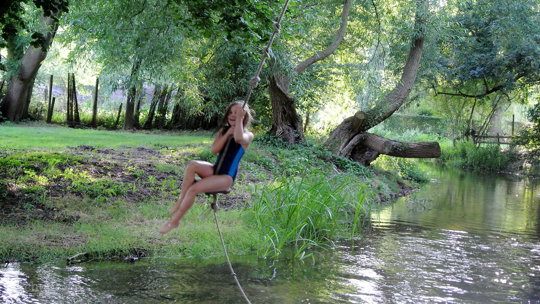 Rope Swing Picture Weddings and Camping.