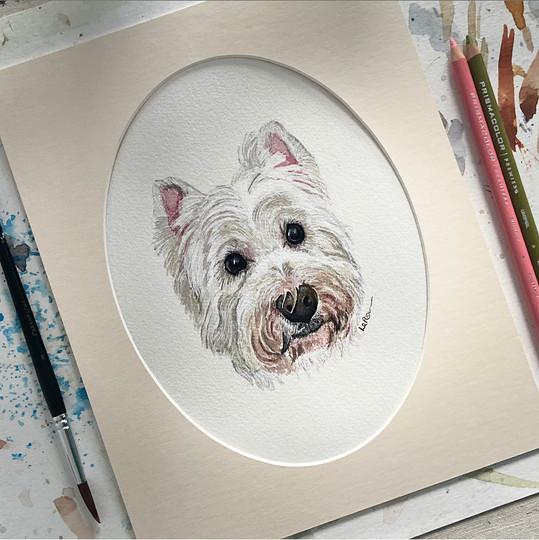 Westie Pet Portrait.jpeg