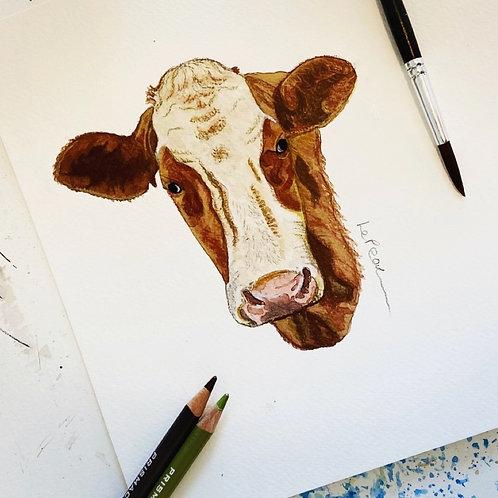 Watercolour Cow