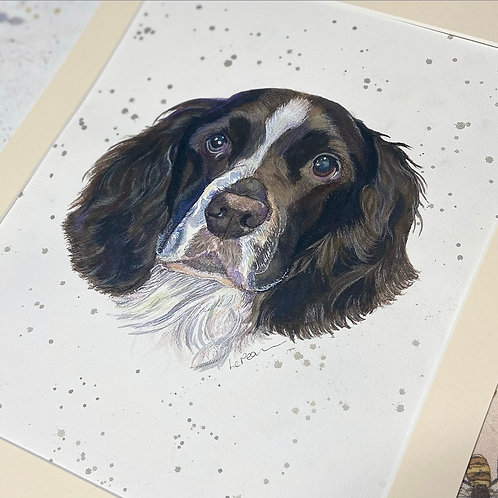 10x12 Pet Portrait for the Price of a 8x10