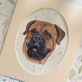 Zeus Pet Portrait