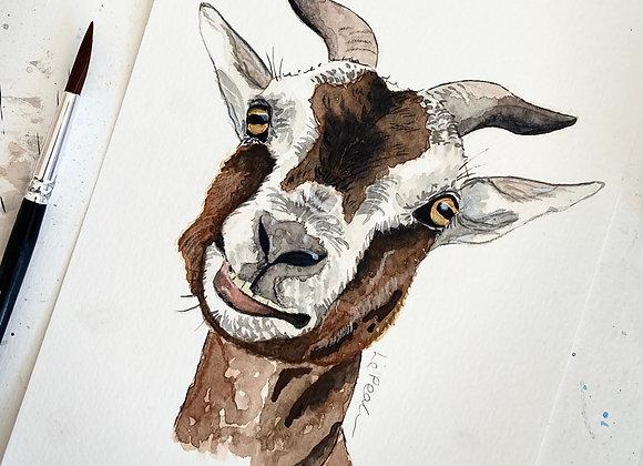 Watercolour Goat