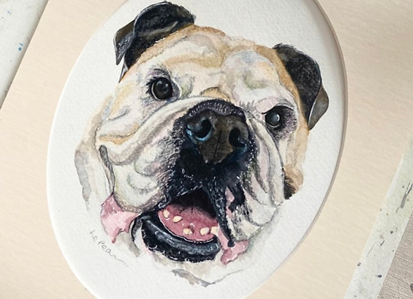 6x8 Pet Portrait with 8x10 Mount