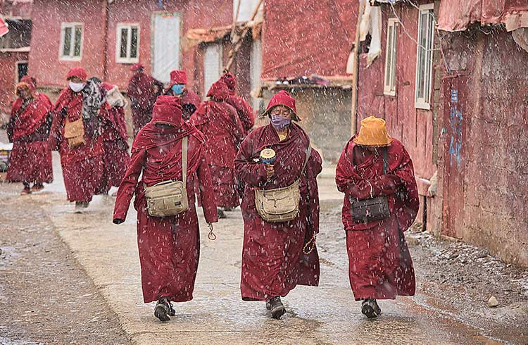 monks in snow