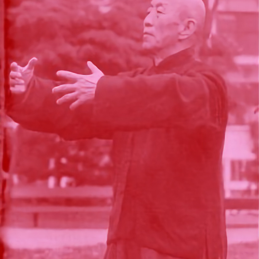 WUDANG QIGONG (6D Workshop)