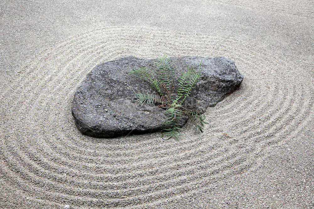 Zen Garden as a Way