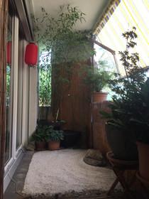 maya_zen garden.JPG