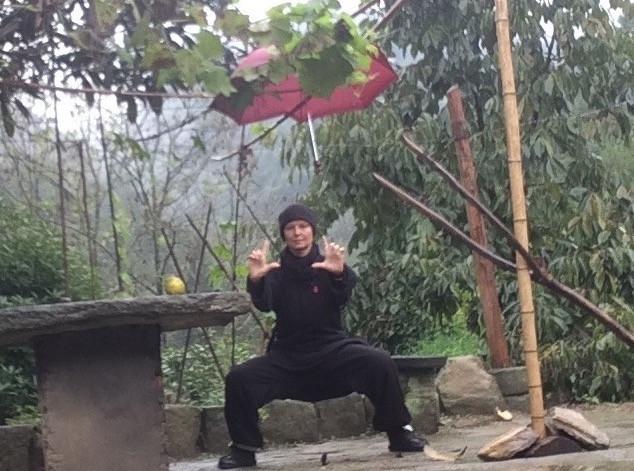 maya-wudangshan