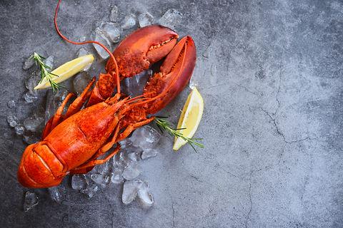 Fresh lobster food on a black plate back