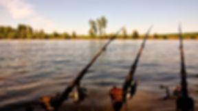 fishing rod - flickr_edited.jpg