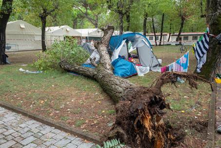 Maltempo flagella il Nord. Cade un albero, morte due bimbe di 3 e 14 anni, aperta inchiesta