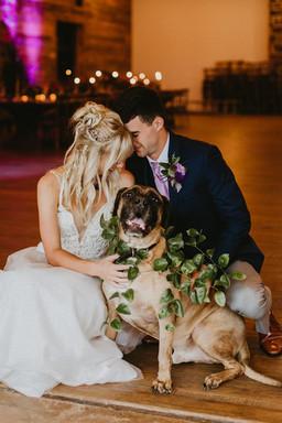 Abigail + Dan | Puppy Love