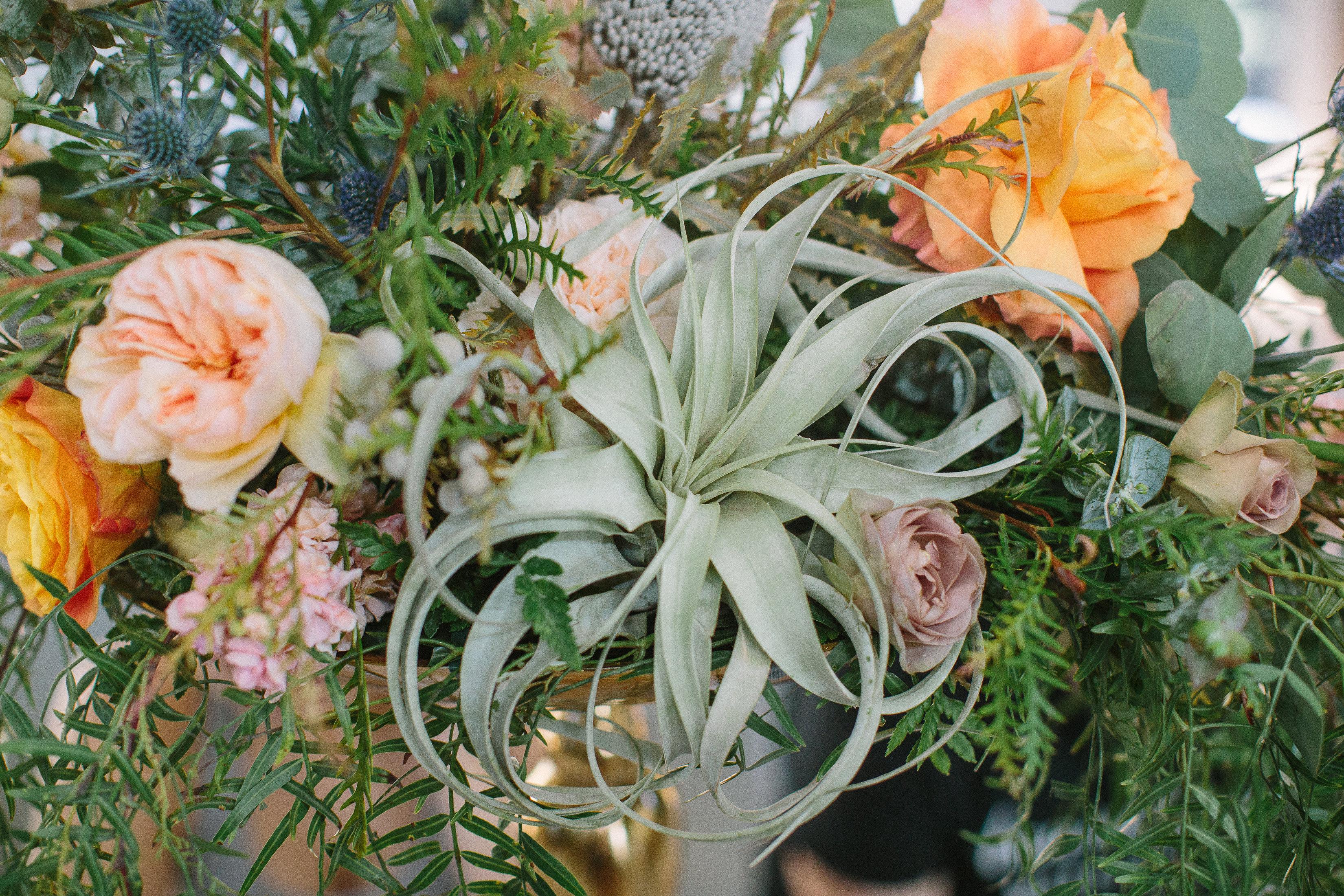 Ellen-Ashton-Photography-Peach-Creek-Ranch-Weddings-Wed-and-Prosper161