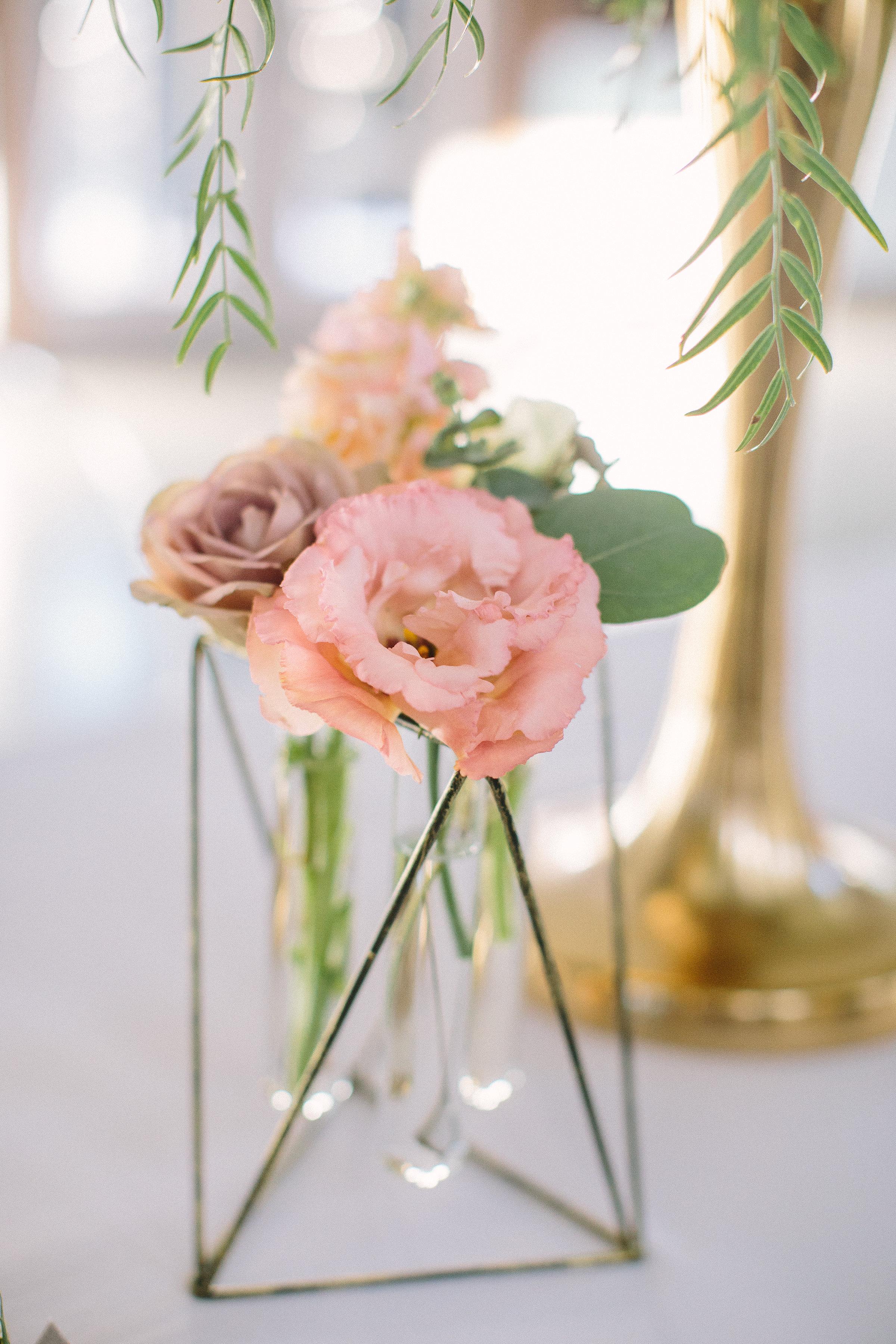 Ellen-Ashton-Photography-Peach-Creek-Ranch-Weddings-Wed-and-Prosper163