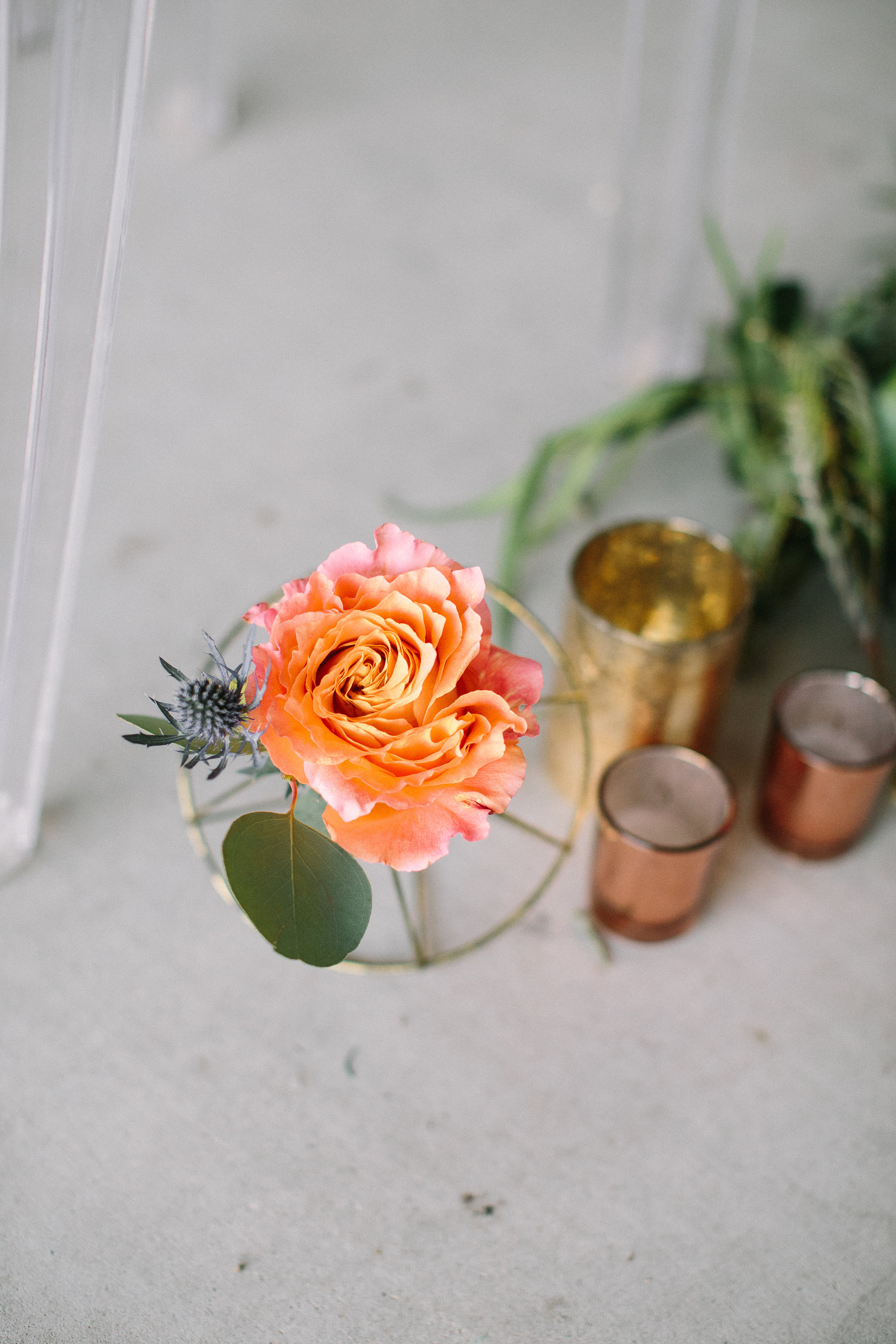 Ellen-Ashton-Photography-Peach-Creek-Ranch-Weddings-Wed-and-Prosper367