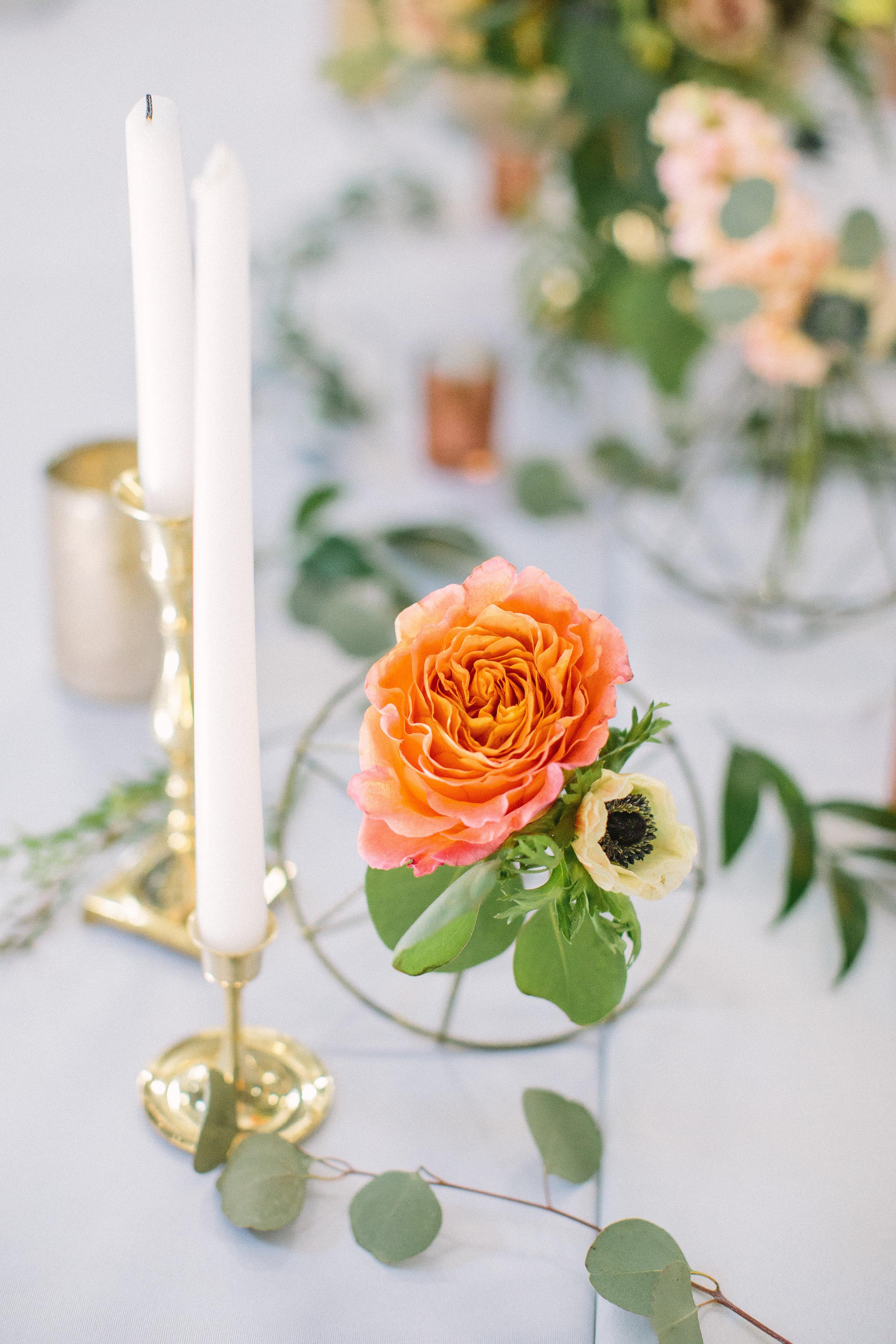 Ellen-Ashton-Photography-Peach-Creek-Ranch-Weddings-Wed-and-Prosper79