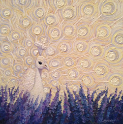 Peacock and Lavender1