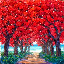 Flame Tree Pathway
