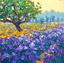 Monet's Iris