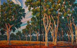 Magnificent Eucalyptus (Diptych)