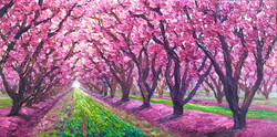 Orchard Walk