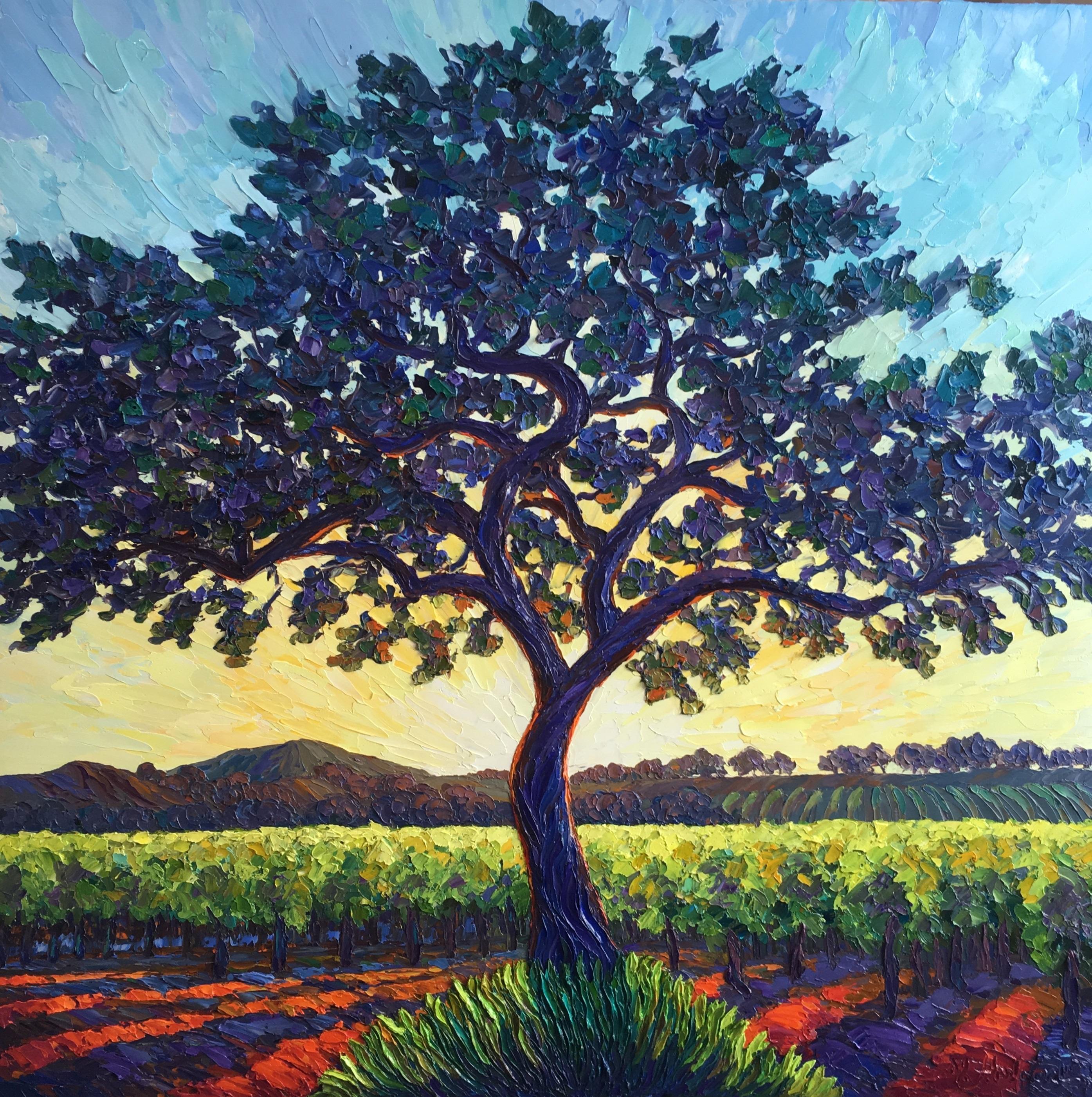 Vineyard Oak Tree