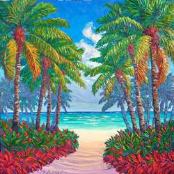 Rainbow Palm Beach