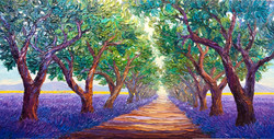 Path to Provence