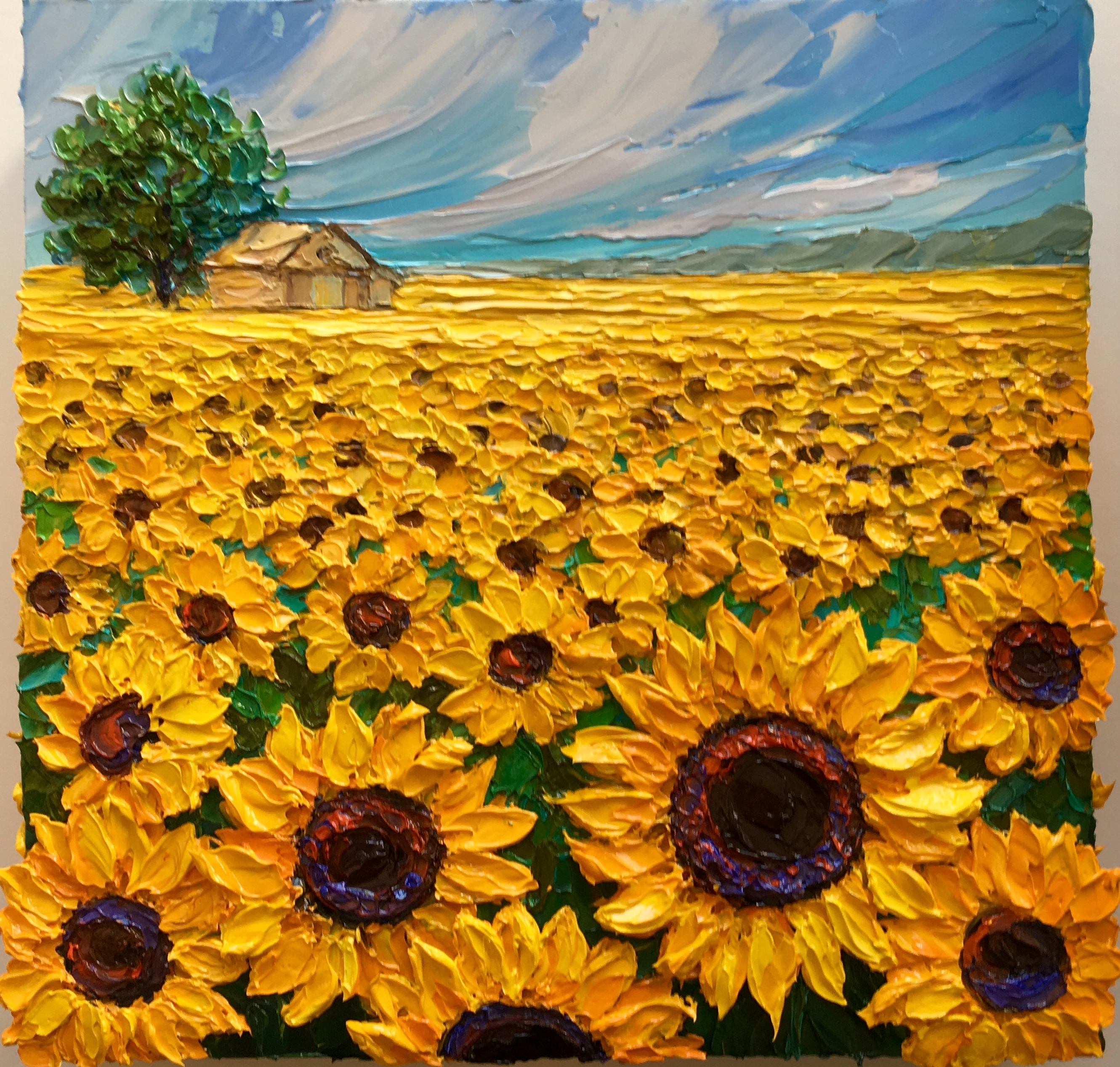 Sunny Provence 2