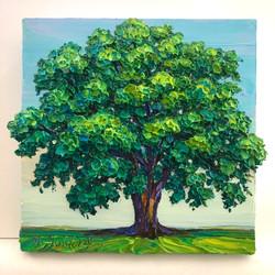 Petite White Oak
