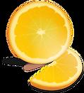 orange-42896_960_720.png