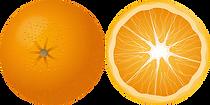 orange-158258__340.webp