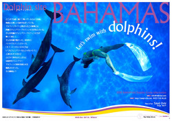 weblue_bahamas2012
