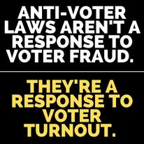 Voter Suppression Action Alert