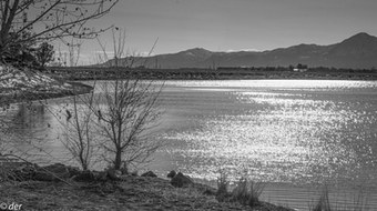 WaterShimmer_Week8_Water_Russell_edited.