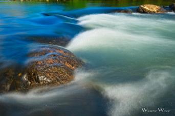 Water_Week 6_Motion_Winkler.jpeg