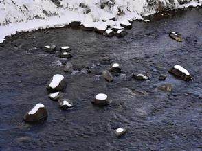 Rocky Water_Week 8_Water_Sylven Watson.j
