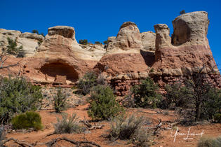 Week 17_Landscape_Canyons of Ancients 33