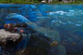 Watchful Water spirit