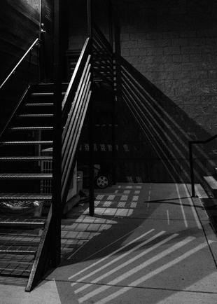 DgoOrganics BW shadowed stairs.jpg