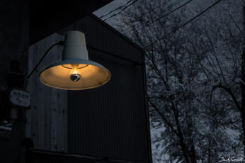 Silver Light_15_Street_Sarah.jpg