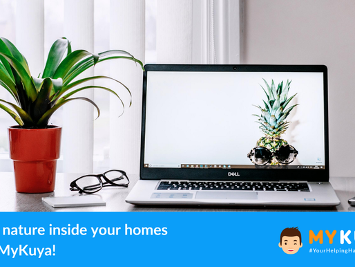 Bring nature inside your homes with MyKuya