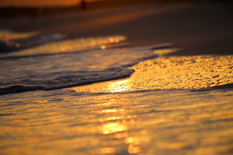 Peaceful Shores
