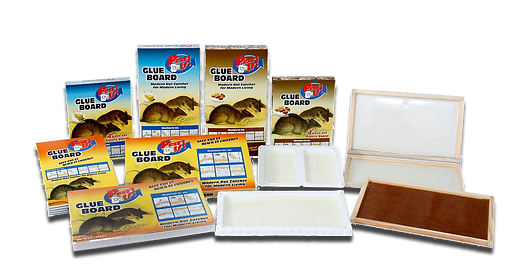 Pest-Off-Glue-Boards-are-the-modern-rat-