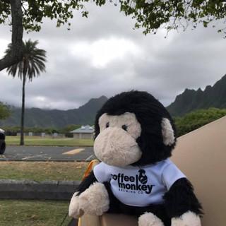 Aloha Ohana!