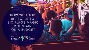 How We Took 10 People to Six Flags Magic Mountain on a Budget